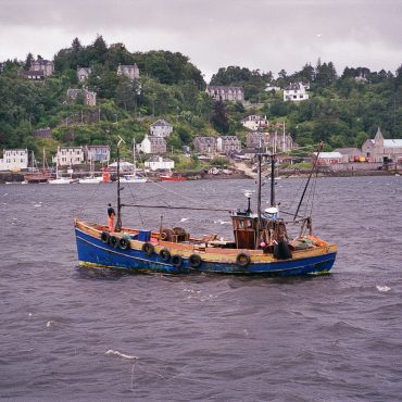 Dual purpose ringnetter and trawler, 'Harvest Queen', CN167, Oban, September 1988. She was built in Fairlie in 1949 and was previously registered LH169.