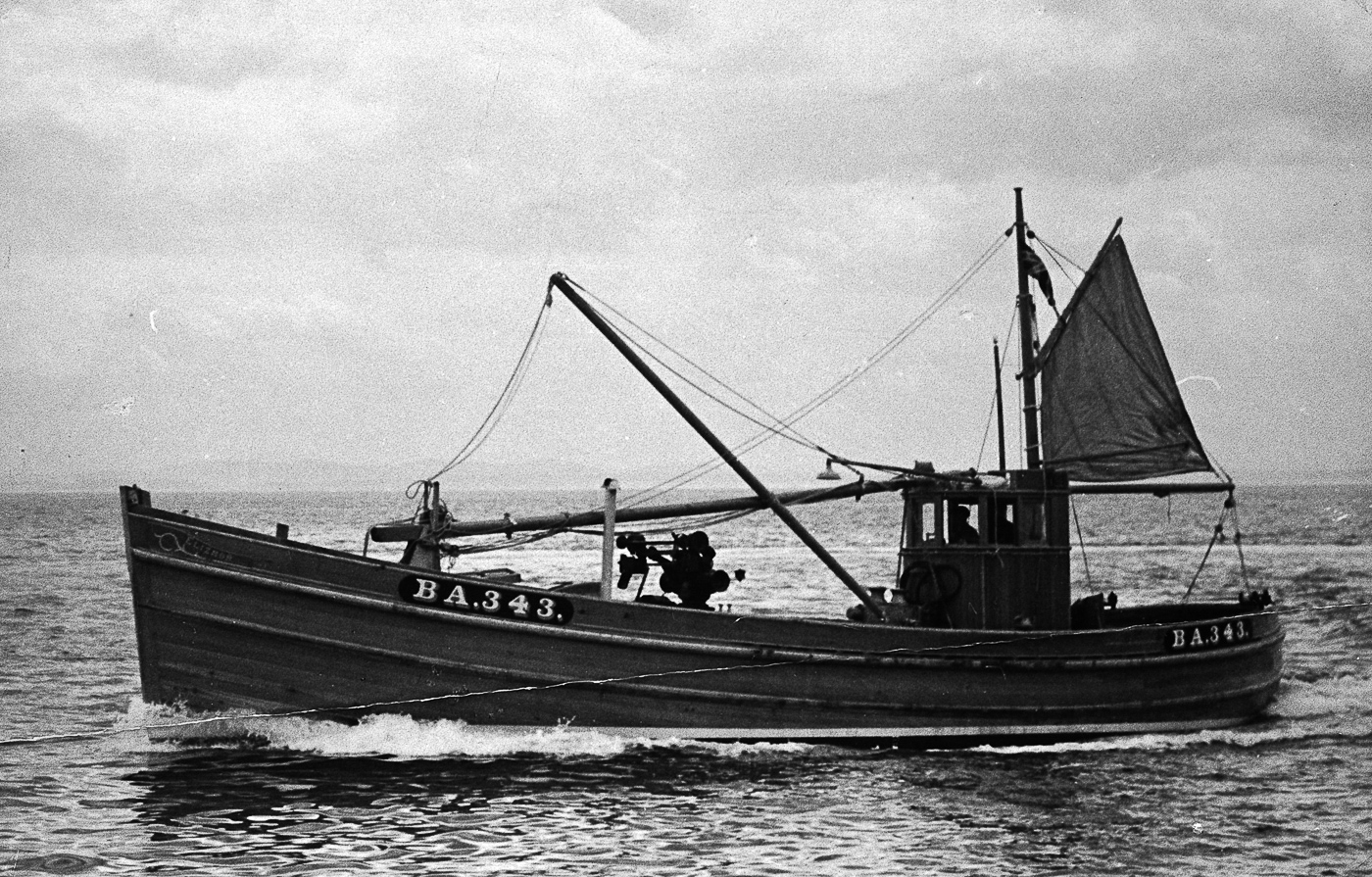 Elizamor BA343, at sea, 1948. She was built by J. N. Miller boatbuilders, St Monans, as a dual purpose ringnetter and seiner. She was 54ft long and weighed 27 tons.